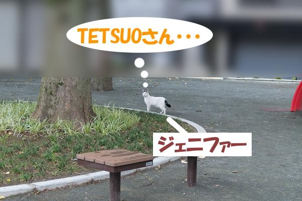 TETSUOさん