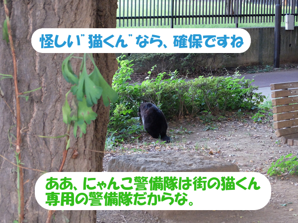 """怪しい""""猫くん""""なら、確保ですね。ああ、にゃんこ警備隊は街の猫くん専用の警備隊だからな。"""