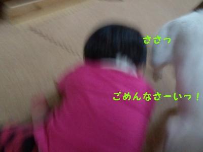 20131219気になる匂い②