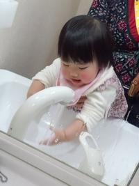 20140212洗面所のチーちゃん④
