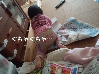 20140218広告紙③
