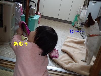 20140302③