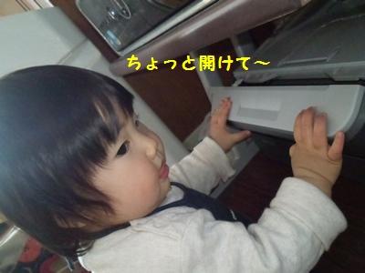 プリンターとチーちゃん20140327③