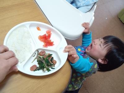 20140507昼食①