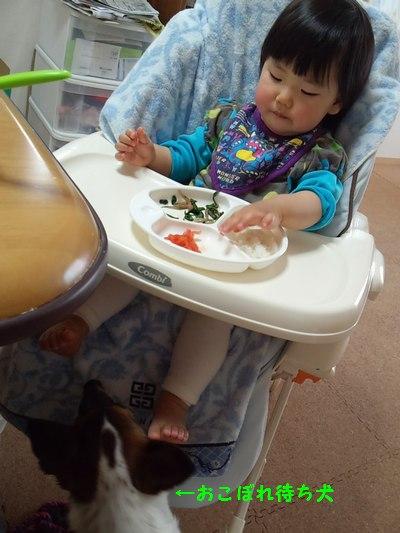 20140507昼食③