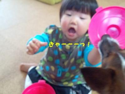 20140507チーちゃんとチャイ⑤