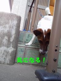 20140415②