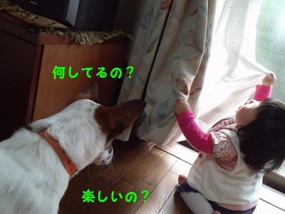 20140522013710afe.jpg