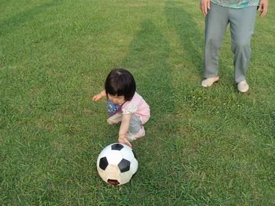 サッカーボールとチーちゃん①20140615