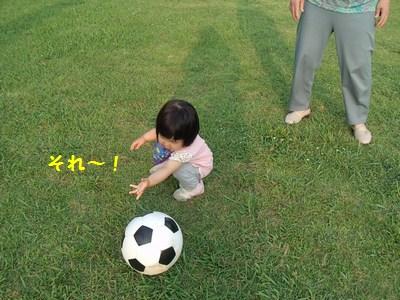 サッカーボールとチーちゃん②20140615