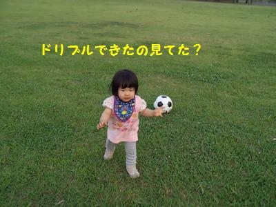 サッカーボールとチーちゃん⑤20140615