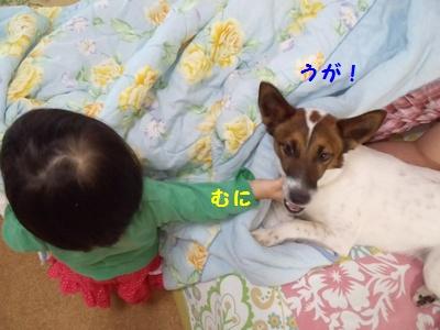 20140505③