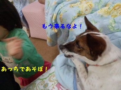 20140718003619c77.jpg