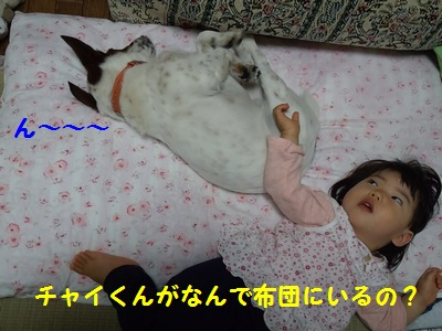 201407 実家 布団③