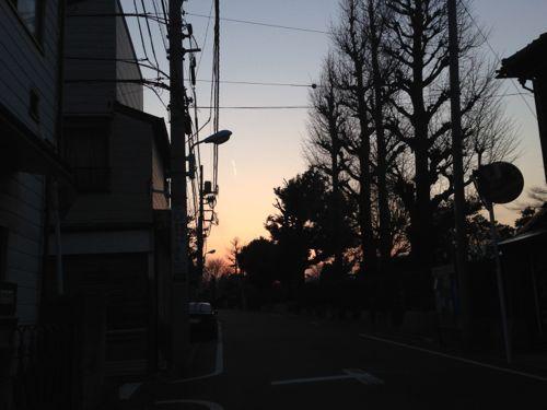 IMG_4153zoshigaya.jpg