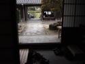 P4132423suzuki.jpg