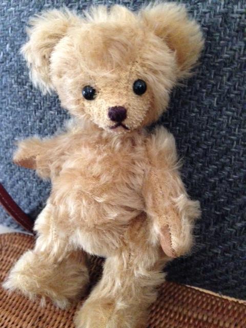 bear0616_2.jpg