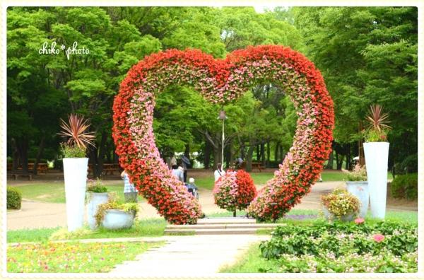 photo-490 お花のハート