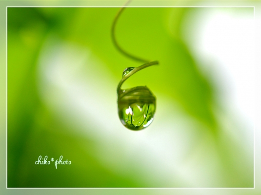 水滴photo-507