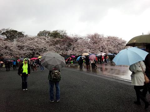 上野恩賜公園20140330