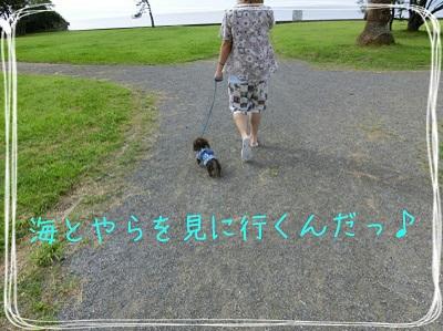 tateyama1-6.jpg
