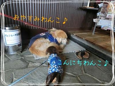 tateyama1-7.jpg