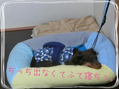 tateyama1-9.jpg