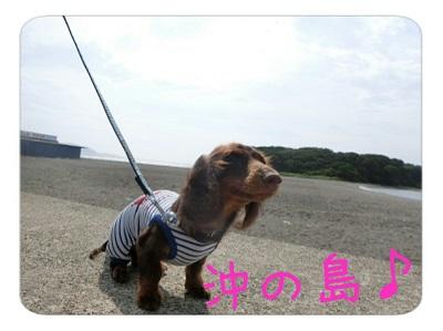 tateyama2-11.jpg