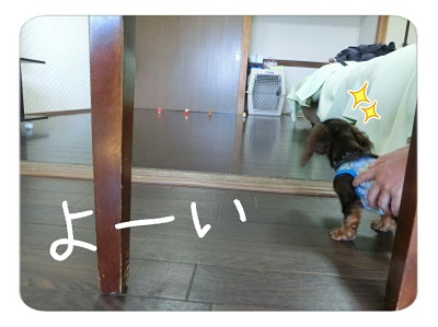 tateyama3-17.jpg