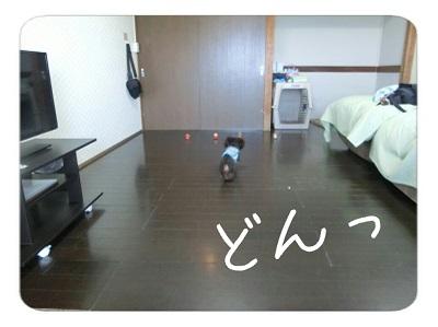 tateyama3-18.jpg