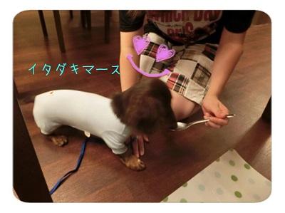 tateyama3-23.jpg