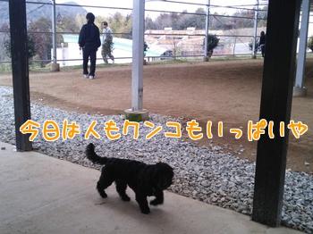 cmkQXJxo9RiFf_q1393853293_1393853393.jpg