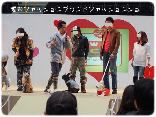 愛犬ファッションショー