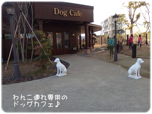 ペニーレインドッグカフェ入口