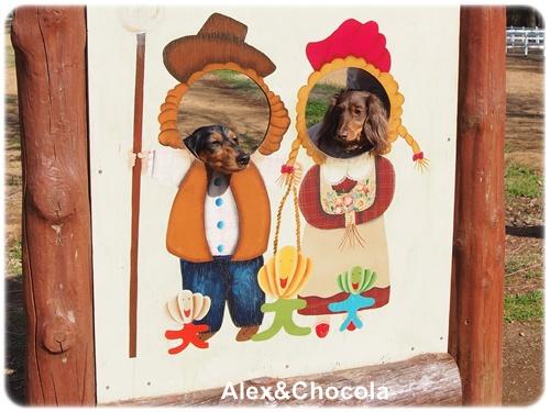 Alexとショコラ
