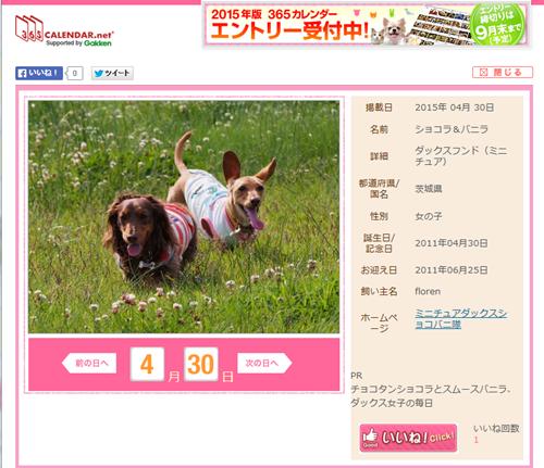 365日カレンダー2015全犬種
