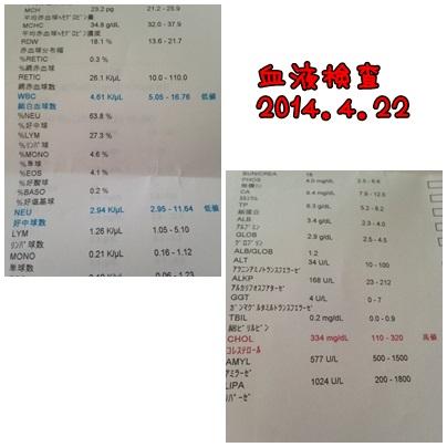 page_20140425215539b77.jpg
