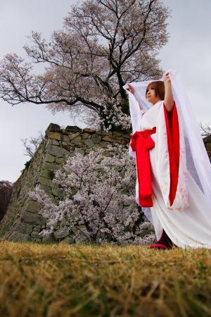 MEIKO写真集サンプル・黄泉桜