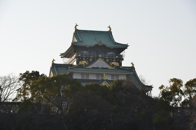 s-2014,03,16 大阪城公園 梅林 092