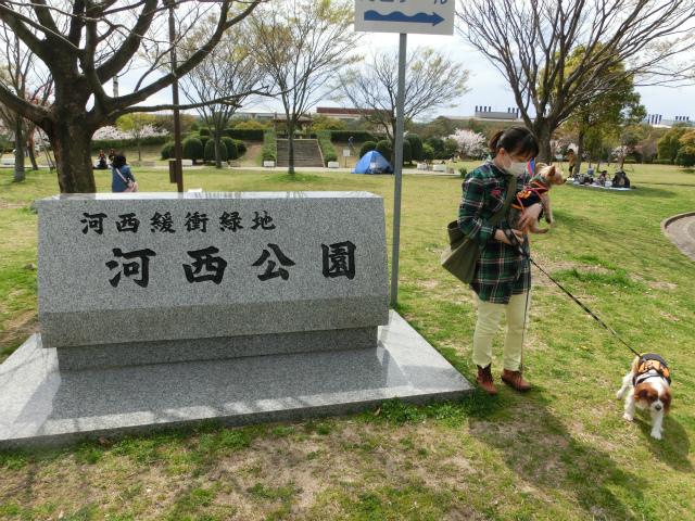 2014,04,02 三度、葛西公園へwith洋ちゃん 021
