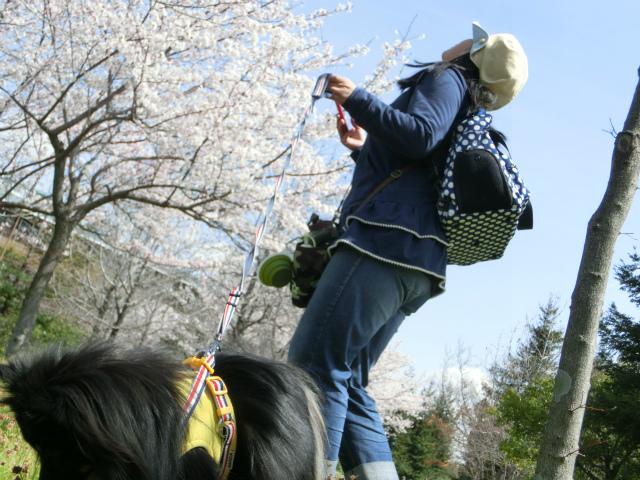 2014,04,03 コロンちゃんと舞洲へ 011