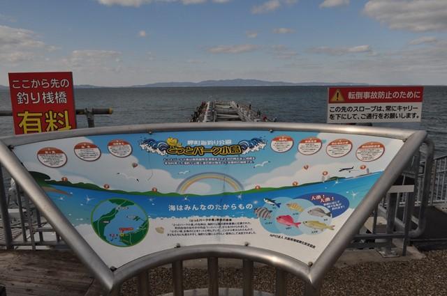 s-2014,1,5 和歌山 加太 062