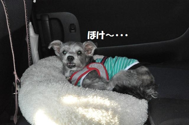2012,10,20若狭車中泊 210