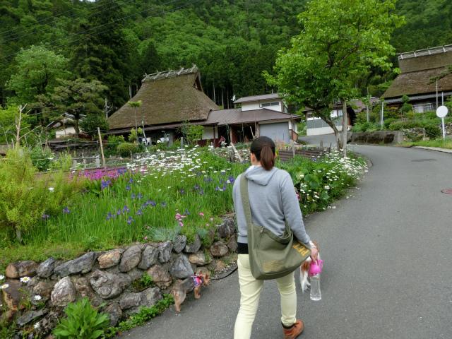 2014,05,23 新緑の美山 056
