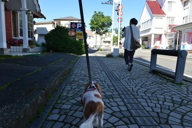 s-清里の旅再び 2014年夏 2 084