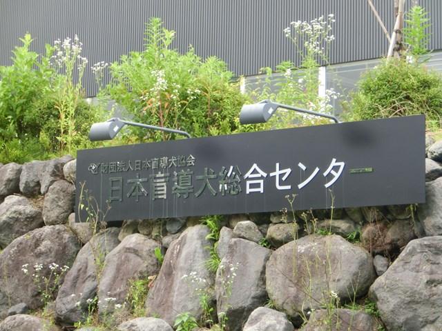 s-清里の旅再び 2014年夏 コンデジ 174