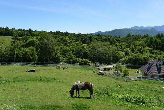 s-清里の旅再び 2014年夏 2 124