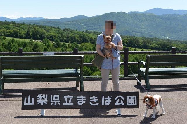 s-清里の旅再び 2014年夏 2 137