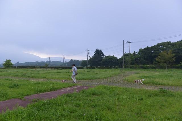 s-清里の旅再び 2014年夏 2 217
