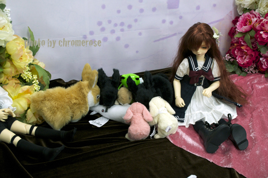 dolpa31after_08